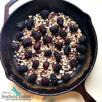 Blackberry Hazelnut Flaugnarde from Sassy Southern Yankee